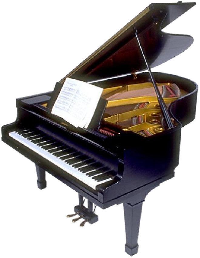 grand piano copy 2.jpg